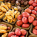 Potatoes by Lauri Novak
