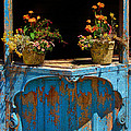 Pots Over Peeling Paint by Dave Mills