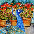 Potted Peacock by Miriam  Schulman