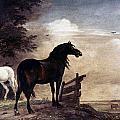 Potter: Horses, 1649 by Granger