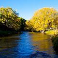 Poudre River by Dana Kern