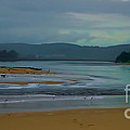 Powlett River Inlet On A Stormy Morning by Blair Stuart
