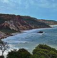 Praia De Tambaba - Paraiba by Carlos Alkmin