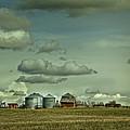 Prairie Life Style by Diane Dugas