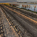 Prairie Road Storm Clouds Mud Tracks by Mark Duffy