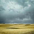 Prairie Storm Alberta by Diane Dugas