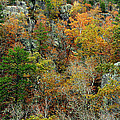 Prarie Hollow Gorge In Autumn by Greg Matchick