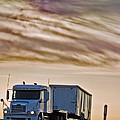 Precious Cargo by Shani Soils
