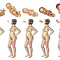 Pregnancy, Artwork by Jose Antonio PeÑas