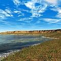 Prehistoric Coastal Landscape, Artwork by Walter Myers