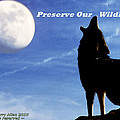 Preserve Our Wildlife by Larry Allan