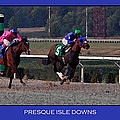 Presque Isle Downs by Rebecca Samler