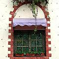 Pretty Decorated Window by Yali Shi