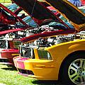 Pretty Mustangs In A Row by FeVa  Fotos