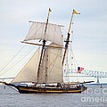 Pride Of Baltimore II In Front Of The Harbor Bridge by Mark Dodd