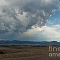 Promises Of Rain by Fran Riley