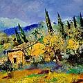 Provence 452190 by Pol Ledent