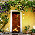 Provence Door Number 1 by Lainie Wrightson