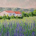 Provence Lavender Volonne by Frederic Payet