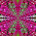 Psychadelic Flower by George Pasini