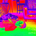 Psychedelic Doggy Love by Renee Trenholm