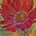 Psychedelic Flower by Deborah Benoit