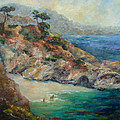 Pt Lobos View by Carolyn Jarvis