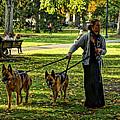 The Dog Walker by Jeff Stallard