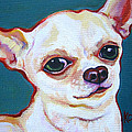 White Chihuahua - Puddy by Rebecca Korpita