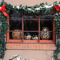 Pueblo Pottery Winter Window by Elizabeth Rose