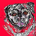 Pug by Joyce Goldin