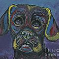Puggle In Abstract by Ania M Milo