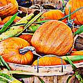 Pumpkin And Corn Combo by Ms Judi