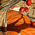 Pumpkin Berries by Susan Herber