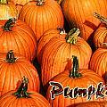 Pumpkin Card by Randy Harris