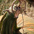 Pumpkin Curling Ribbon by Susan Herber