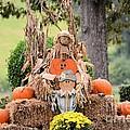 Pumpkin Harvest 2012 by Maria Urso