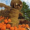 Pumpkin King by Paul Mangold