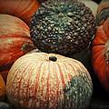 Pumpkin Mix by Douglas Barnard