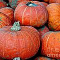 Pumpkin Patch by Kevin Fortier