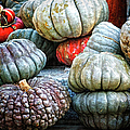 Pumpkin Pile II by Joan Carroll