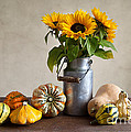 Pumpkins And Sunflowers by Nailia Schwarz