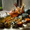 Pumpkins by Diego Re