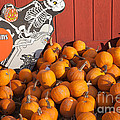 Pumpkins For Sale I by Clarence Holmes