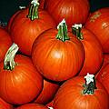 Pumpkins For Sale by LeeAnn McLaneGoetz McLaneGoetzStudioLLCcom