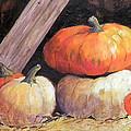 Pumpkins In Barn by Hilda Vandergriff