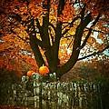 Pumpkins On The Wall by Joyce Kimble Smith