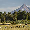 Puntiagudo Volcano In The Background by Abraham Nowitz