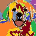 puppy Portrait 7 by Adrian Tovnodtov