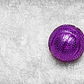 Purple Ball Cat Toy by Andee Design